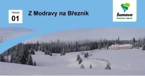 hlavicka_breznik